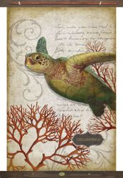 Coral Turtle Canvas & Wood Wall Art *NEW