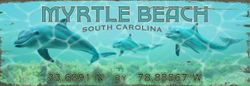Dolphin Beach Wall Art - Personalize *NEW
