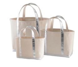 Glam Canvas Natural/Silver Tote - 3 Sizes