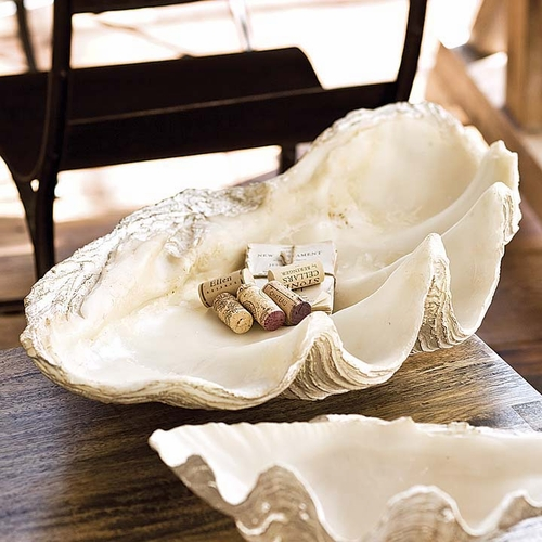 Imperial Clam Shell *Backorder
