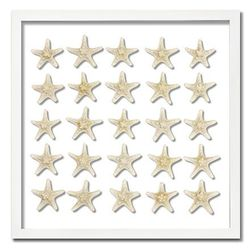 Knobby Starfish Beach Wall Art <font color=cf2317> NEW</font>