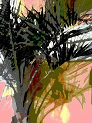 """Palm Fronds 14""""x18"""" Matted Print"""