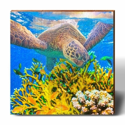 Sea Turtle & Coral Beach Wall Art<font color=a8bb35> New</font>
