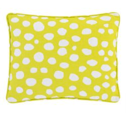 Spot On Indoor/Outdoor Pillow - Citrus