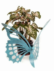 Metal Butterfly Plant Holder