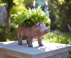 Town & Country Pig Planter *Out of Stock
