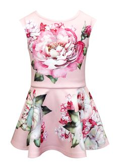 Baby Sara Fit And Flare Beautiful Rose Print Dress