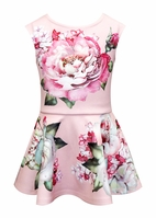 Baby Sara Fit And Flare Beautiful Rose Print Dress 2T 3T 6x