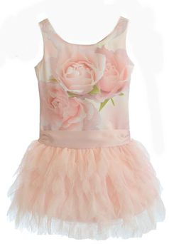 Biscotti Pink Roses Drop Waist Tulle Toddler Dress 2T