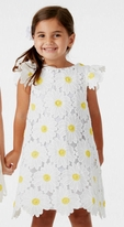 Halabaloo Daisy Lace Infant Toddler Girls  Dress 18M 2T