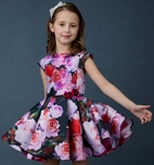 Halabaloo Pink & Red Roses Toddler & Little Girls Dress 2T 3T 4T 4 6X