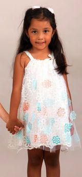 Halabaloo Ivory Embr. Flowers Organza & Tulle Overlay Dress 4T 4 Last 2