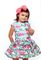 Halabaloo Rose Print Darling Drop Waist Girls Dress 24m 2T 4 6