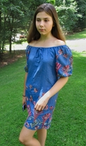 Hayden Los Angeles Chambray Blue Floral Embroidered Dress 7/8