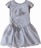 Isobella & Chloe Silver Drop Waist Girls Dress 2T 4 6 6x
