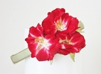 Meg Dana Clematis Spray Red Hand Made Flowers headband