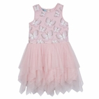Pippa & Julie Butterfly Pink & Silver Tulle Toddler Girls Dress 3T