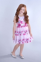 Zoe Ltd Ebmroidered Organza Girls Speciak Occasion Dress 7/6X