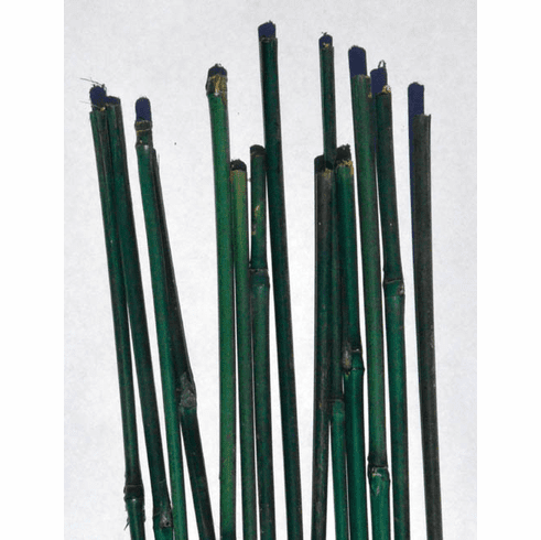 "24"" Bamboo Stakes, Set/10"