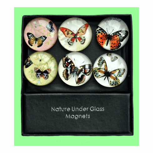 Butterfly Glass Magnets, Set of 6