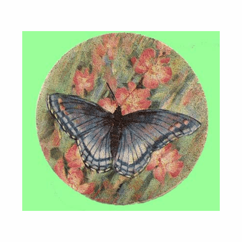 Butterfly Sandstone Coasters, Set/4
