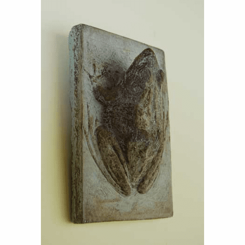 Frog Wall Plaque