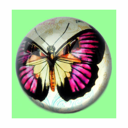 Glass Dome Paperweight, Butterfly