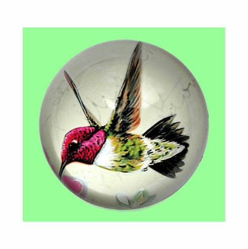 Glass Dome Paperweight, Hummingbird