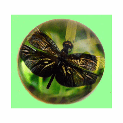 Green Emerald Dragonfly Glass Dome Paperwieght