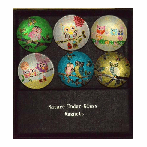 Owl Glass Magnets, Set/6