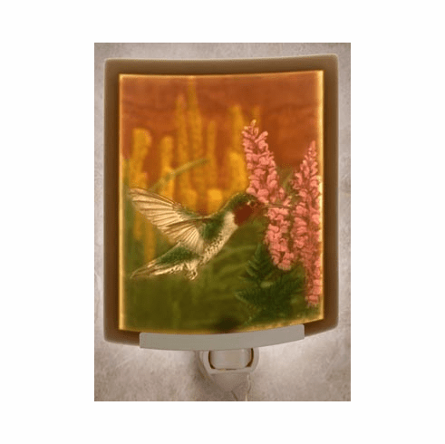 Porcelain Lithophane Night Lite, Hummingbird w/Color