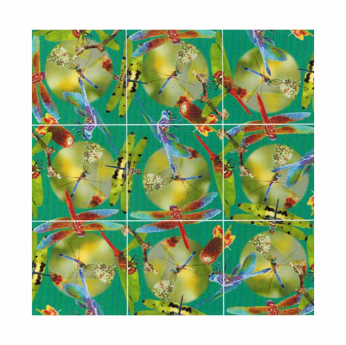 Scramble Squares Puzzle, Dragonfly
