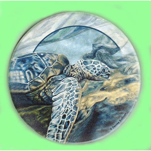 Sea Turtle Sandstone Coasters, Set/4