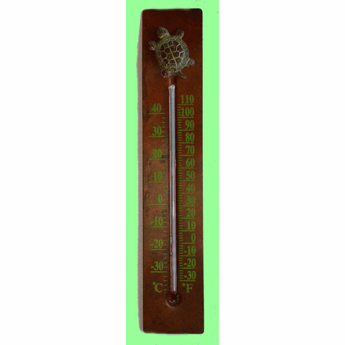 Turtle Thermometer