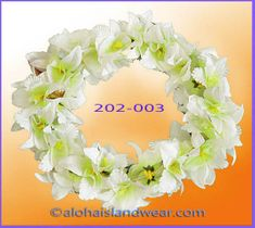 New Orchid Headband - White/Green