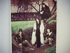 Argent, Rod Color Photo Trading Card Signed Autograph Import
