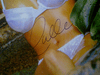 Berry, Halle  Color Photo Signed Autograph Cheesecake