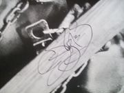 Burton, Levar Photo Signed Autograph Roots 1977