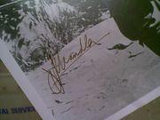 Chandler, Jeff  Photo Signed Autograph Early Movie Scene