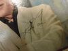 """Como, Perry """"Sings Merry Christmas Music"""" 1960 LP Signed Autograph """"That Christmas Feeling"""""""