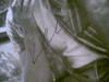 """Costner, Kevin  1993 """"A Perfect World"""" Photo Signed Autograph Movie Scene"""
