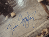 """Creedence Clearwater Revival John Fogerty Tom Fogerty Stu Cook Doug Clifford """"Willy And The Poor Boys"""" 1969 LP Signed Autograph"""
