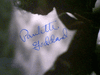 Goddard, Paulette  Photo Signed Autograph Paramount Pictures