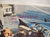 Heatherton, Joey Photo Lithograph Signed Autograph Where Love Has Gone 1964