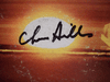 Hills, Chris LP Signed Autograph Everything Is Everything