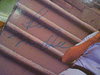 """Marshall, Penny  & Cindy Williams """"Laverne & Shirley Sing"""" 1976 LP Signed Autograph Photos"""
