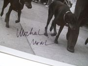 Nouri, Michael Photo Signed Autograph The Doberman Gang 1980