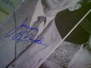Robards, Jason  & Maureen Stapleton Toys In The Attic 1960 Playbill Signed Autograph Cover Photo