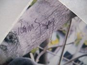 Spacey, Kevin Photo Signed Autograph K Pax
