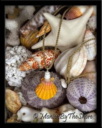 Country Style Hawaiian Sunrise Shell & Puka Shells Cord Necklace